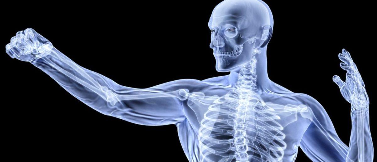 Health-Bones-1200x516.jpg
